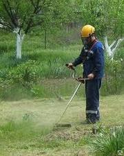 Стрижка газона, уборка газона в Сочи