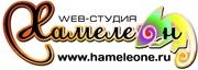 Создание,  сопровождение,  продвижение Интернет-сайтов в  Сочи